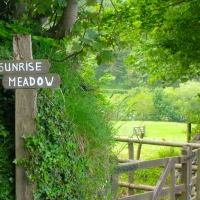 Coleridge\'s Inspiration Exmoor Forest